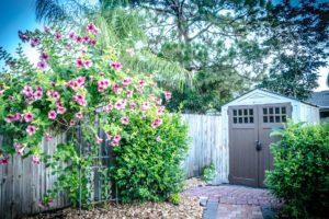 Gartenhaus eingewachsen